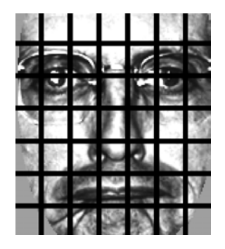 Figure 2: Applying LBPs for face recognition starts by dividing the face image into a 7 x 7 grid of equally sized cells.