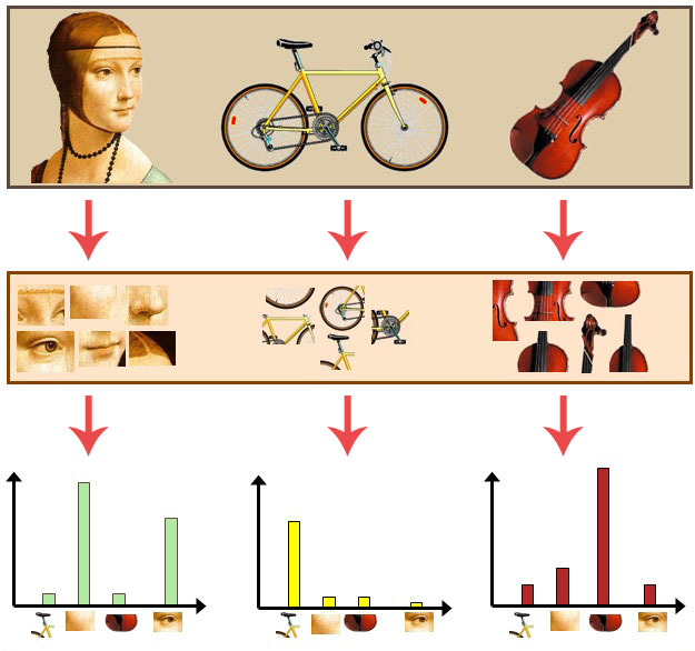 Figure 4: Taking three input images (top), extracting image patches from each of them (middle), and then counting the number of times each visual word appears in the respective images.